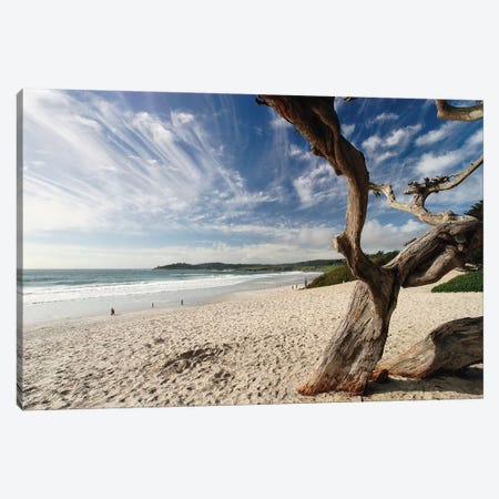Beach View Carmel By The Sea California Canvas Print #GOZ327} by George Oze Art Print