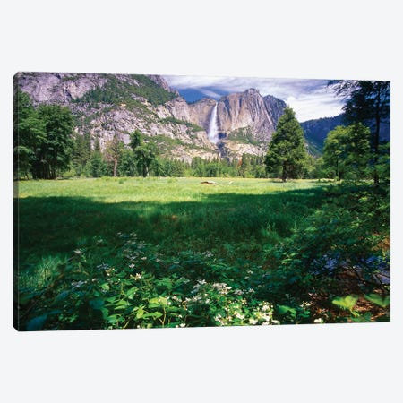 Yosemite Valley And Falls Canvas Print #GOZ334} by George Oze Canvas Art