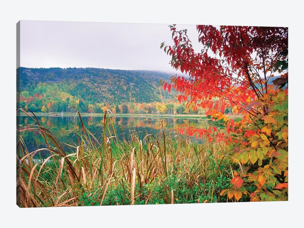 Scenic Lake At Fall, Acadia National Park, Maine by George Oze 1-piece Canvas Art