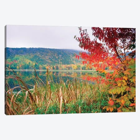 Scenic Lake At Fall, Acadia National Park, Maine Canvas Print #GOZ349} by George Oze Canvas Art