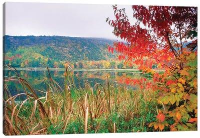 Scenic Lake At Fall, Acadia National Park, Maine Canvas Art Print