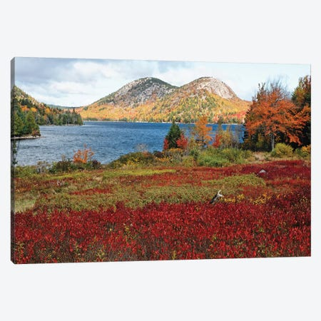 Jordan Pond And The Bubbles, Fall Scenic View, Acadia National Park, Maine Canvas Print #GOZ353} by George Oze Canvas Art Print