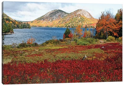 Jordan Pond And The Bubbles, Fall Scenic View, Acadia National Park, Maine Canvas Art Print