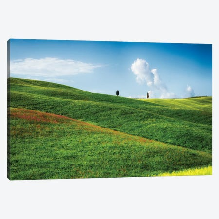 Rolling Hills With Cypress Trees, Tuscany, Italy Canvas Print #GOZ399} by George Oze Canvas Print