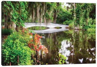 Little White Wooden Footbridge In A Lake, Magnolia Plantation, Charleston, South Carolina Canvas Art Print