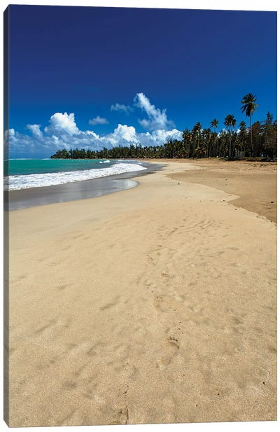 Luquillo Beach, Puerto Rico Canvas Art Print