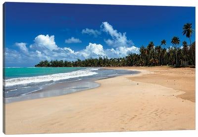 View Of A Tropical Beach, Luquillo, Puerto Rico Canvas Art Print