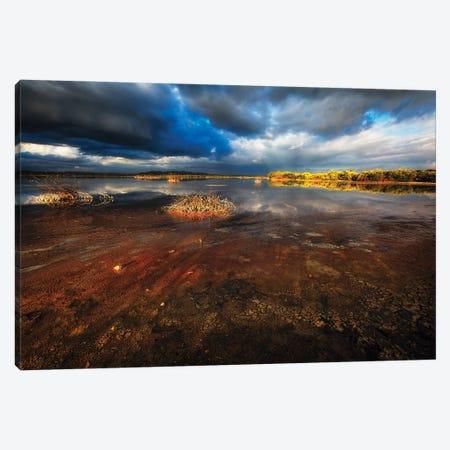 Saltwater Marsh Landscape, Cabo Rojo, Puerto Rico Canvas Print #GOZ441} by George Oze Canvas Print