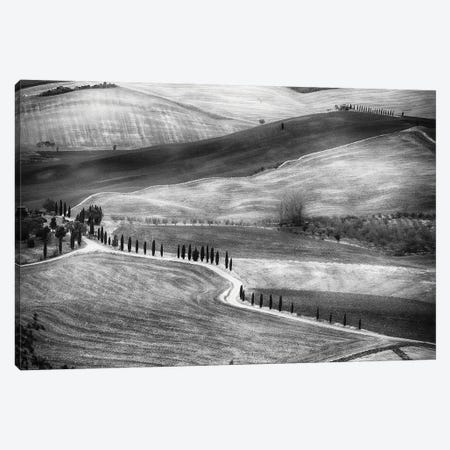 Country Road In Val D'Orcia, Tuscany, Italy Canvas Print #GOZ496} by George Oze Canvas Print