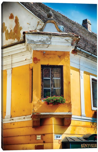 Corner Window with Flowers Canvas Art Print