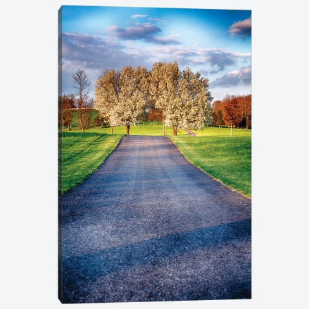 Country Road with Blooming Trees Canvas Print #GOZ64} by George Oze Canvas Art
