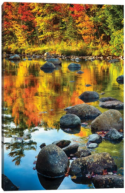 Fall Colors Reflected in a River Canvas Art Print