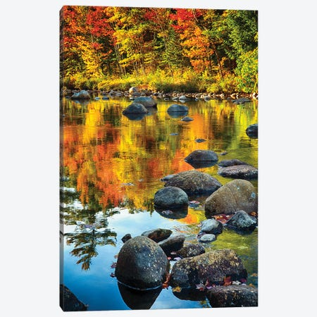 Fall Colors Reflected in a River Canvas Print #GOZ76} by George Oze Canvas Print
