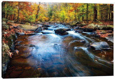 Fall Scenic of a Rocky River, New Jersey Canvas Art Print