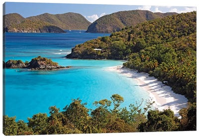High Angle View of a Bay, Trunk Buy, St. John, US Virgin Islands Canvas Art Print