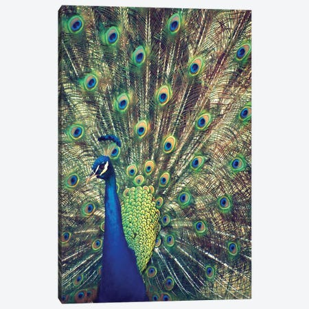Royally Blue I 3-Piece Canvas #GPE21} by Gail Peck Canvas Print