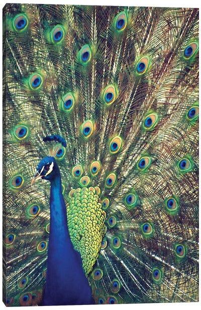 Royally Blue I Canvas Art Print