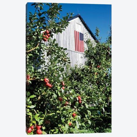 Patriotic Barn Canvas Print #GPE35} by Gail Peck Canvas Art Print