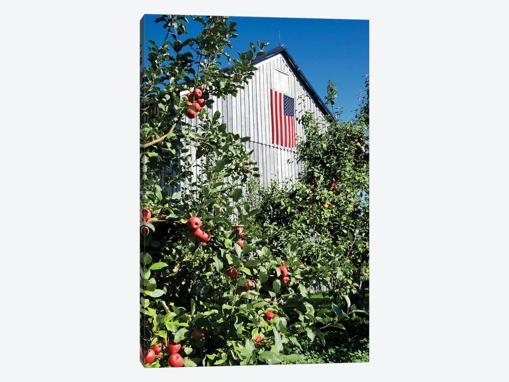 Patriotic Barn by Gail Peck 1-piece Canvas Print