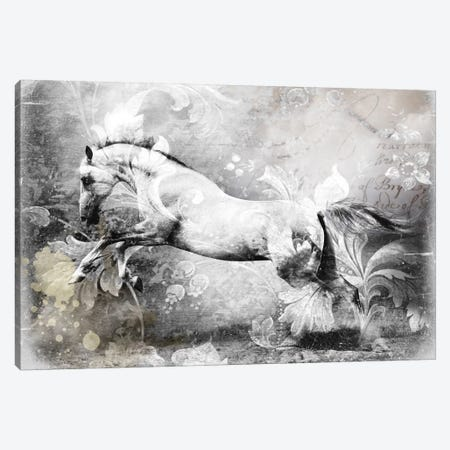 White Horse Canvas Print #GPH100} by GraphINC Canvas Art Print