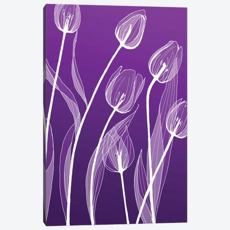 X-Ray Flowers I Canvas Print #GPH104} by GraphINC Canvas Artwork
