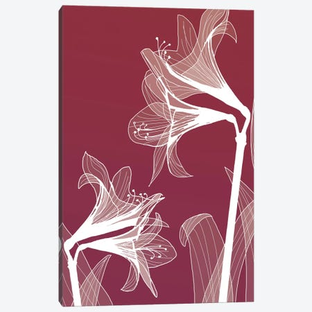 X-Ray Flowers II Canvas Print #GPH105} by GraphINC Canvas Artwork