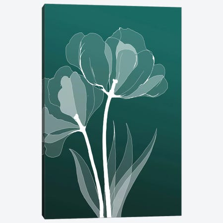 X-Ray Flowers III Canvas Print #GPH106} by GraphINC Canvas Artwork
