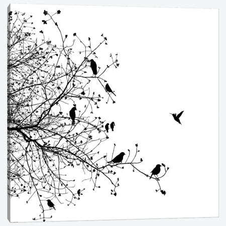 Birds I Canvas Print #GPH12} by GraphINC Canvas Art Print