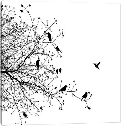 Birds I Canvas Art Print