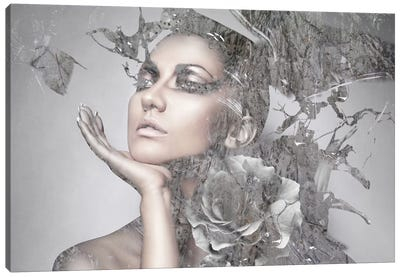 Cool Grey Canvas Print #GPH17