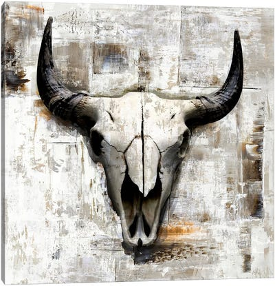Cowskull On White Canvas Art Print