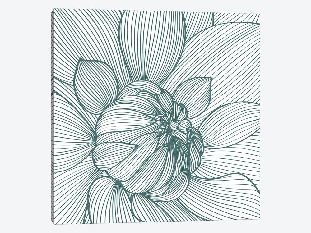 Myrrhis Odorata I by GraphINC 1-piece Canvas Print