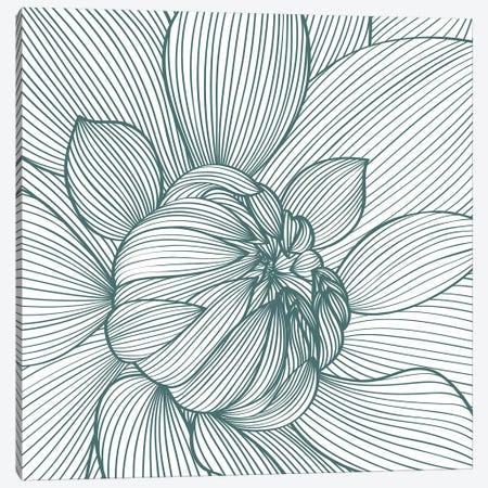 Myrrhis Odorata I Canvas Print #GPH69} by GraphINC Canvas Art