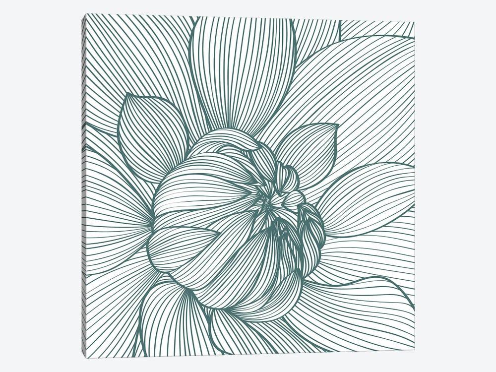 Myrrhis Odorata I by GraphINC 1-piece Canvas Print