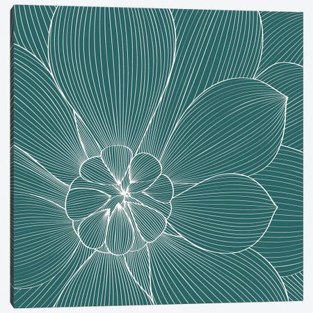 Myrrhis Odorata II Canvas Print #GPH70} by GraphINC Canvas Art Print