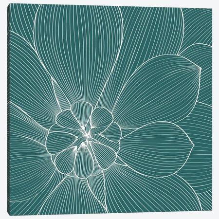 Myrrhis Odorata II Canvas Print #GPH70} by GraphINC Canvas Art Print