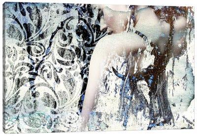 Mystery Girl Canvas Print #GPH71