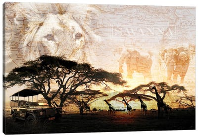 Savanna Canvas Art Print