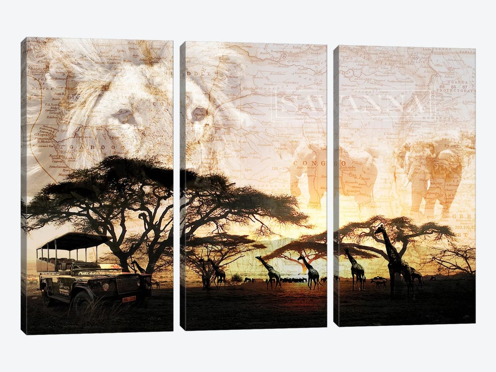 Savanna by GraphINC 3-piece Canvas Art