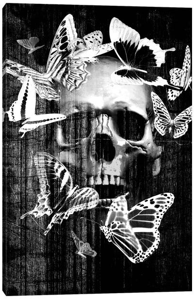 Skull Butterfly Crown Canvas Art Print