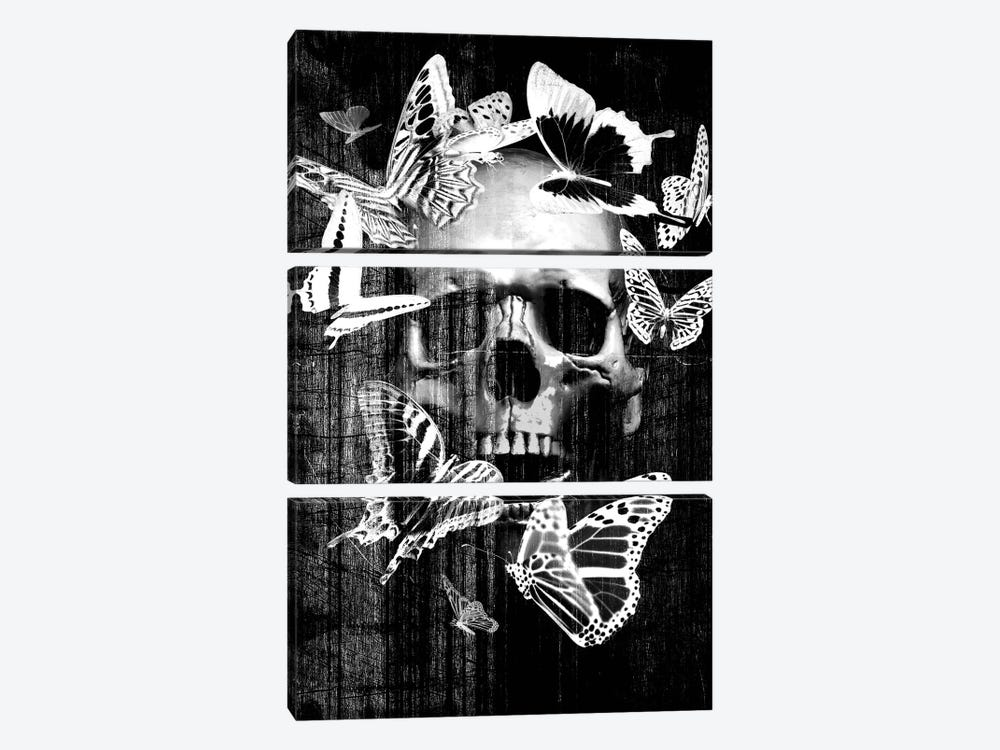 Skull Butterfly Crown by GraphINC 3-piece Canvas Art Print