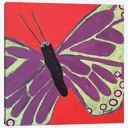 Butterfly III Canvas Print #GRA19} by Sue Graef Canvas Art Print
