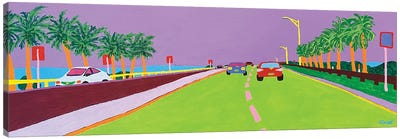 Causeway From Tampa Canvas Art Print