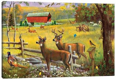 Deer And Covered Bridge Canvas Art Print