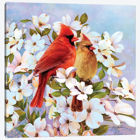 Cardinal Pair & Dogwoods Canvas Print #GRC10} by Greg & Company Canvas Art Print