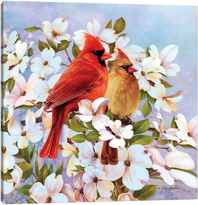 Cardinal Pair & Dogwoods Canvas Art Print