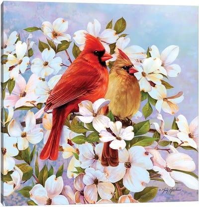 Cardinal Pair & Dogwoods Canvas Art Print
