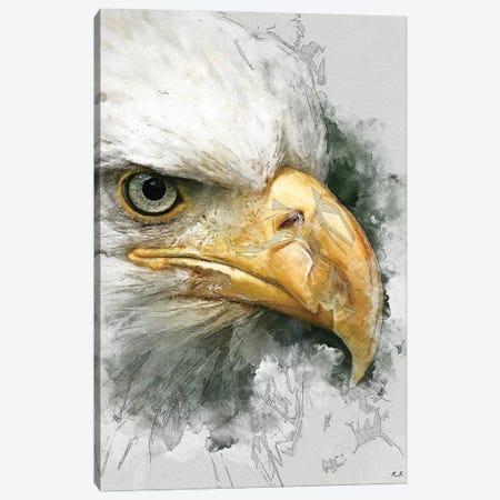 Bald Eagle Canvas Print #GRC114} by Greg & Company Canvas Artwork