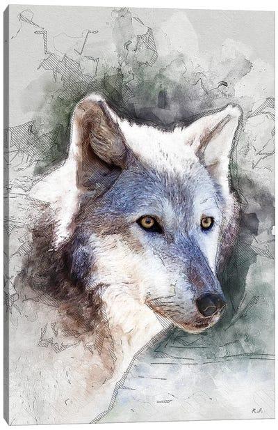 Gray-Wolf Canvas Art Print