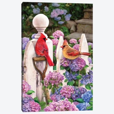 Cardinals On Fence W-Hydrangea Canvas Print #GRC12} by Greg & Company Art Print